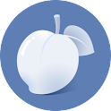 Necta Launcher(for senior) icon