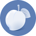 Necta Launcher ( Even children and senior can use) Icon