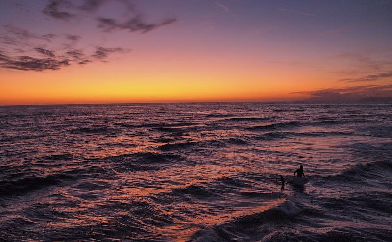 il surfista di frastebio