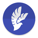 Phoenix Lite for VK