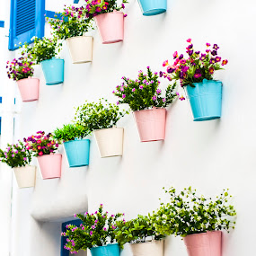 colored details of Greece by Tanawat Pontchour - Nature Up Close Gardens & Produce ( old, exterior, street, stone, door, house, architecture, travel, artwork, city, decor, grunge, village, flower, pictorial, colors, art, paint, country, window, town, view, wall, sidewalk, home, decorative, brick, paper, retro, sandstone, crete, oil, stairs, details, style, mediterranean, building, vintage, decoration, greek, greece, romantic, traditional, cyclades, outdoor, artistic, garden, medieval, courtyard, backstreet )