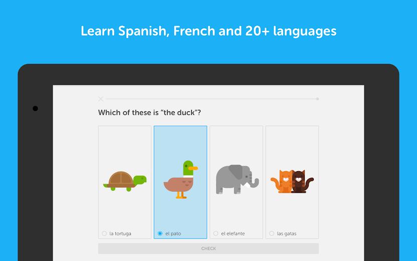 Screenshot 10 for Duolingo's Android app'