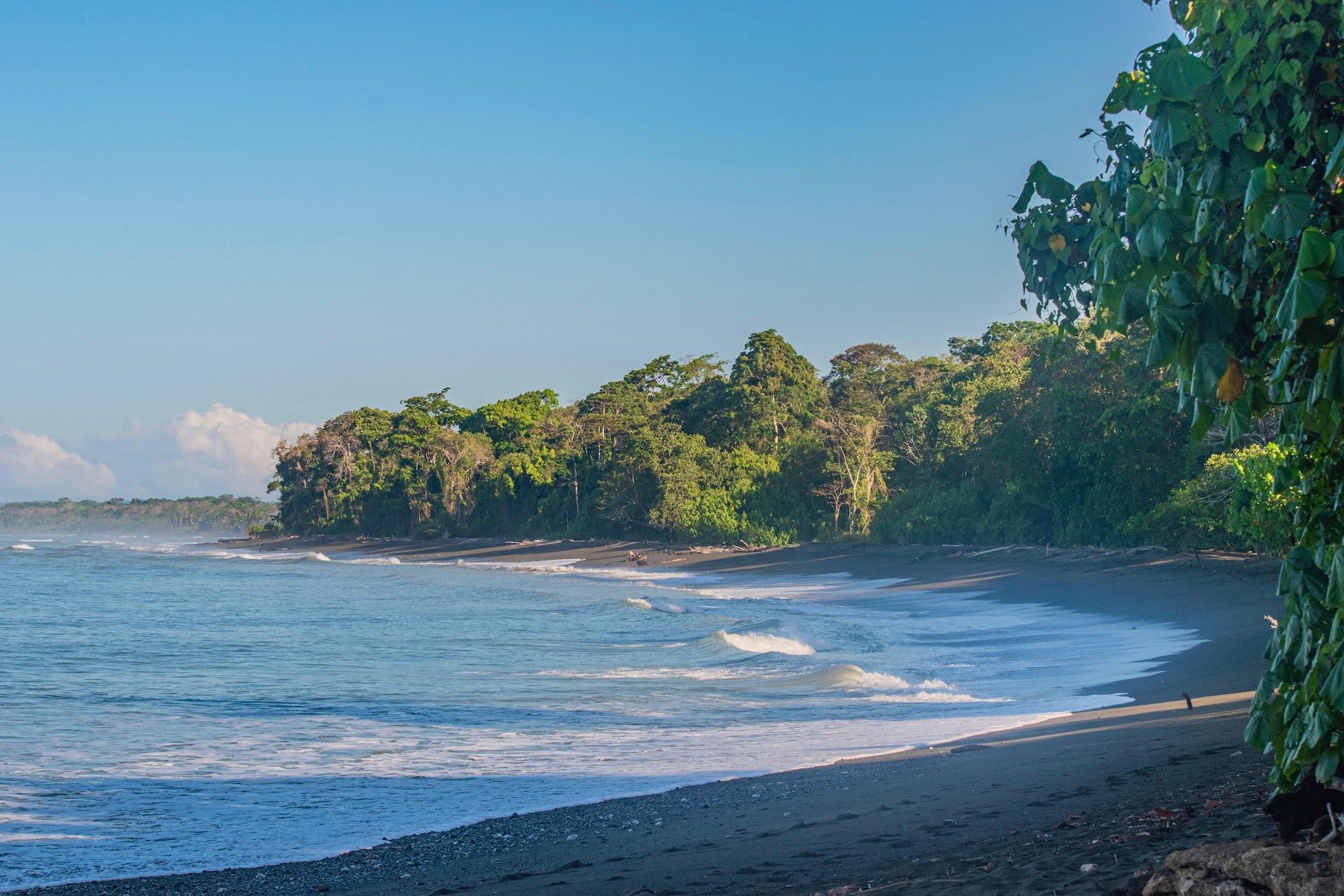 corcovado-costa-rica