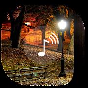 App Relaxing Night ~ Sleep Sounds APK for Windows Phone