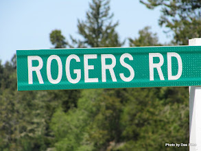 Photo: (Year 2) Day 334 - Another Rogers Road
