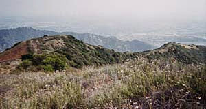 Photo: Looking south from Summit 2843 toward Azusa. On a clear day the view of the city is striking. If you hike (4 minutes) down to the high point to the left of the photo you have great views of the canyon mouth