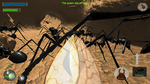 Ant Simulation 3D Full ss1