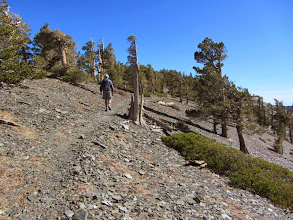 Photo: Heading southeast along the arm extending northwest from the summit of Dawson Peak