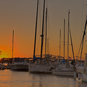 Sunrise at the Marina by Brent Sharp - Transportation Boats ( water, orange, boats, bsharpphotography, bridge, sunrise, sailboat, sun kissed, river,  )