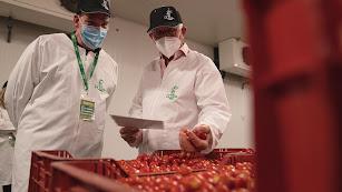 Tomates cherry del Grupo La Cañada.
