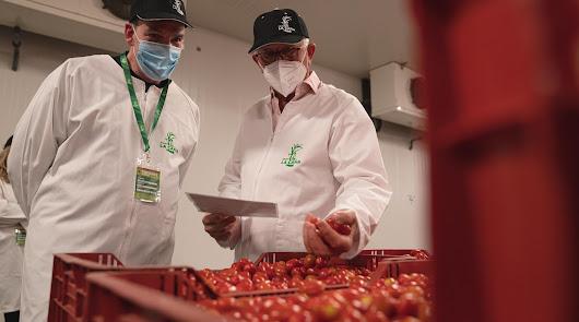 Grupo DIA visita la planta de producción del Grupo La Caña en Castell de Ferro