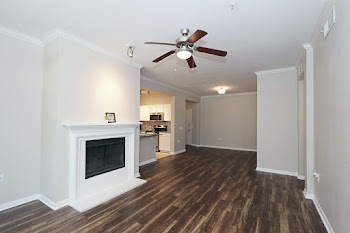 D1 floorplan with wood-style flooring and a cozy fireplace