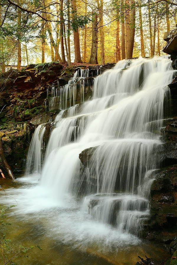 Lockhaven Falls by Travis Houston - Landscapes Waterscapes (  )