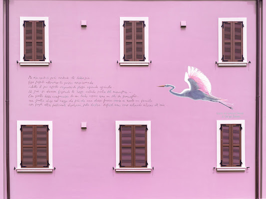 Pink 2021 di carcat