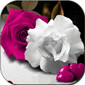 Flowers And Roses Animated Images Gif 4K HD icon