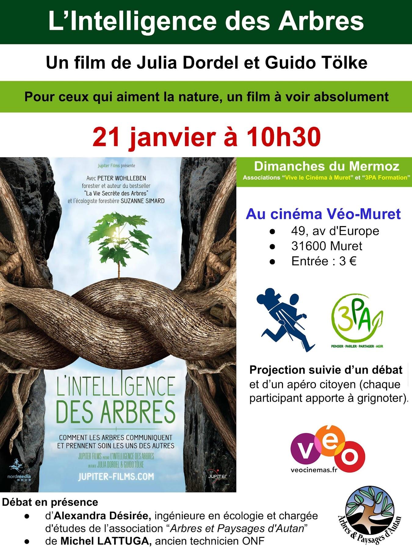 Exposition du 12 janvier au 21 janvier au cinéma Véo-Muret