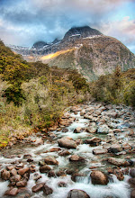 Photo: A Gentle Stream Through New Zealand Milford Sound, New Zealand  All this news out of New Zealand is still upsetting. I've got a lot of contacts and friends down there... and I know it's a rough time. Not much I can do... feel a little useless... so about the best I can do is post some serene and gentle photos of the nicer side of nature. I hope all my friends down there find it gets a little easier as the days move forward.  from the blog www.stuckincustoms.com