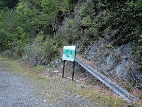 ここが登山口