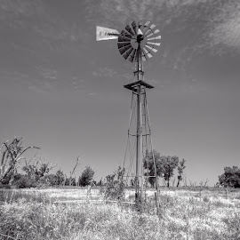 Quivira Windmill by Jim Talbert - Black & White Buildings & Architecture ( sky, nature, hdr, quivera national wildlife refuge, landscape, landscapes, kansas, windmill )