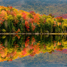 Mirror Lake  by Dan Girard - Landscapes Mountains & Hills ( #mirror, #lake, #nature, #colors, #dangirardphotography, #fall )