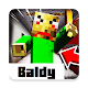 Baldy maps for Minecraft Download on Windows