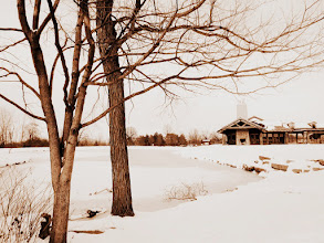 Photo: Old-fashioned photo of trees and cabin by a frozen lake at Cox Arboretum and Gardens in Dayton, Ohio.