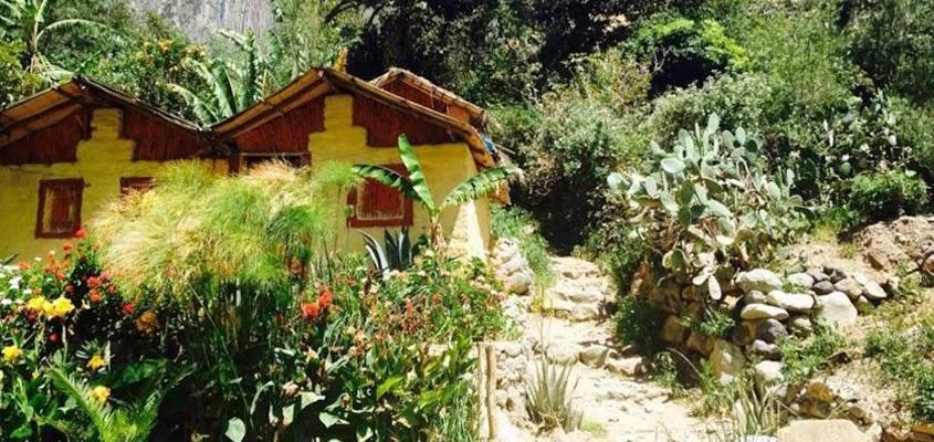 ATRACTIVO AREQUIPA | TREKKING AREQUIPA