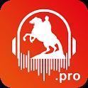 Аудиогид по Санкт-Петербургу! 500 Аудиогидов! icon