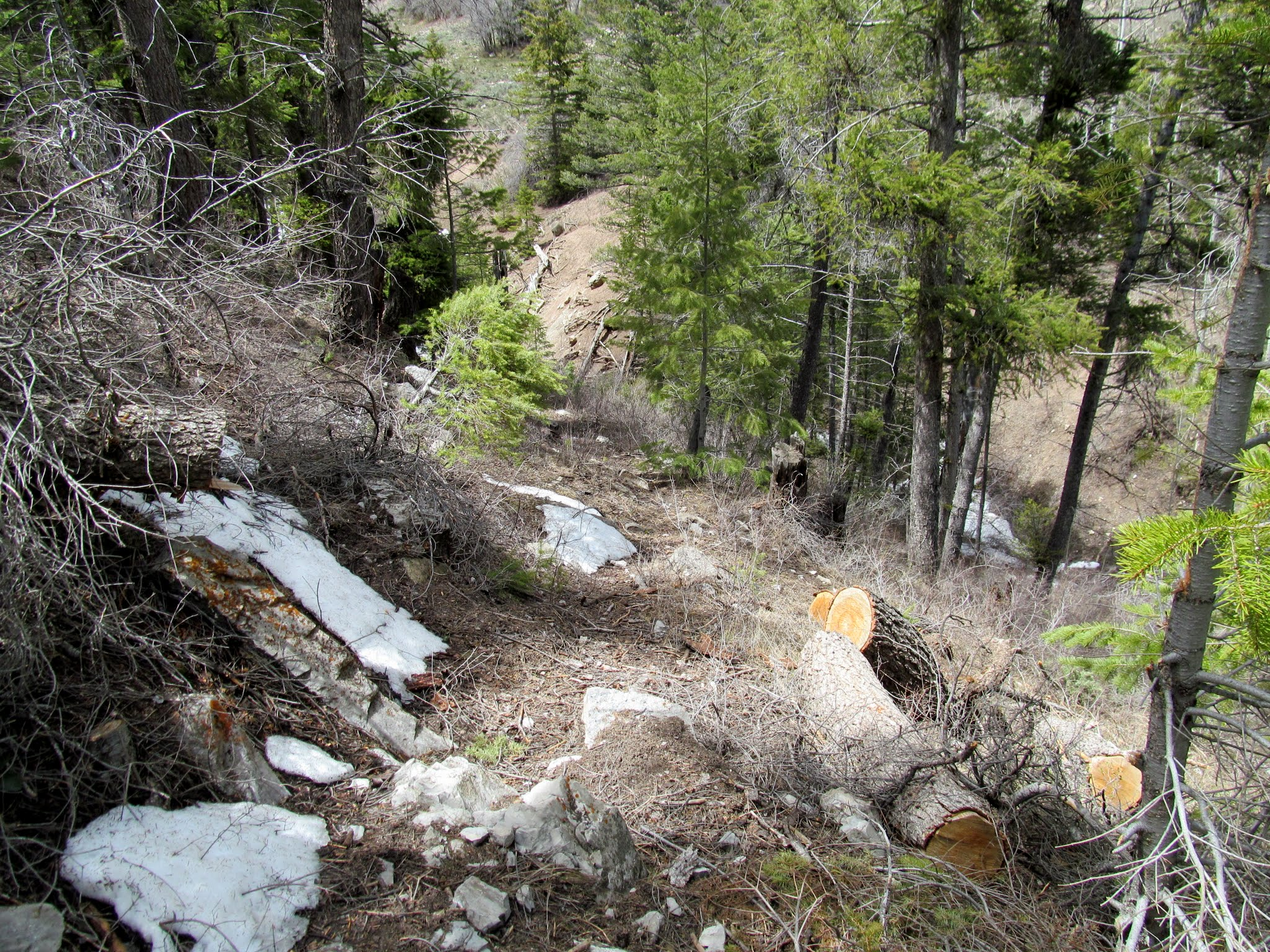 Photo: Steep trail into Diamanti Canyon