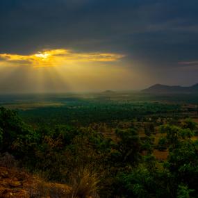 First light by Mahul Mukherjee - Landscapes Sunsets & Sunrises ( nature, sunrays, sunrise, morning, landscape, photo )
