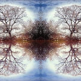 Digref 242 by Michael Moore - Digital Art Things