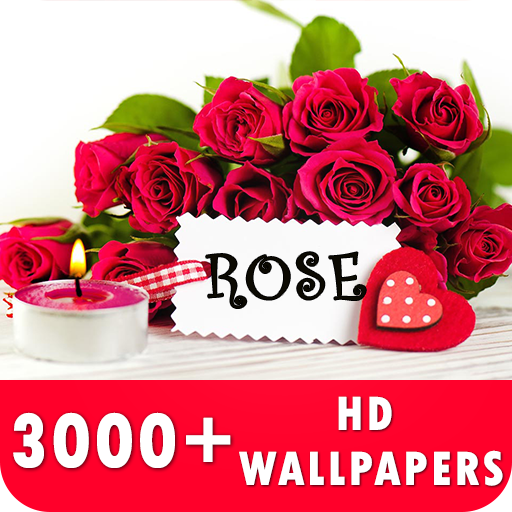 Rose Live Wallpapers HD