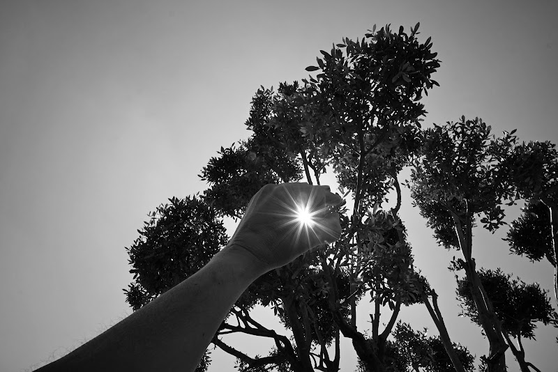 Con la luce in mano.... di lorenzo_raccagni