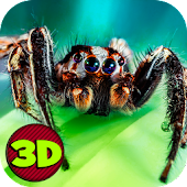 Insect Spider Simulator 3D