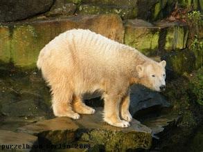 Photo: Ein Blick in den Wassergraben ist auch dringend notwendig ;-)