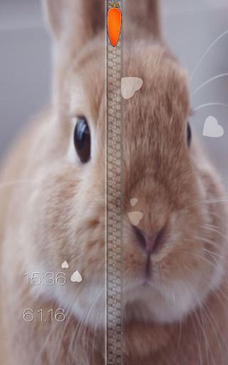 玩免費個人化APP|下載ウサギジッパー画面ロック app不用錢|硬是要APP