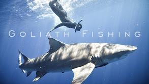 Goliath Fishing thumbnail