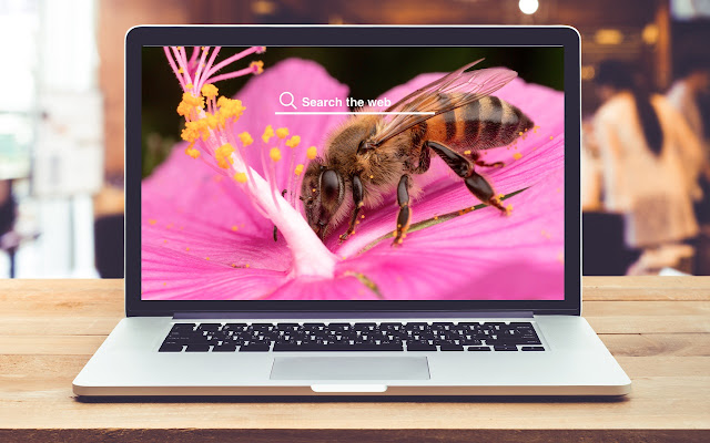 Bees HD Wallpapers Background Theme