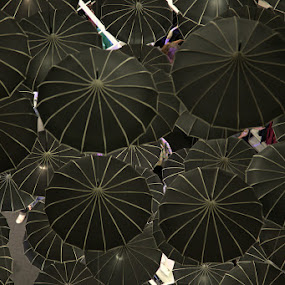 Black Umbrellas by Kaniz Khan - Artistic Objects Other Objects (  )