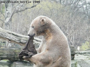 Photo: Ah, da ist der alte Jutesack :-)