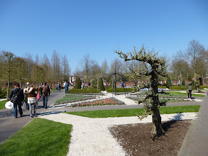 Photo: Kukenhof Flower Gardens -- only open two months out of the year