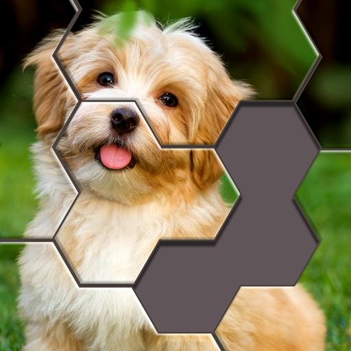 Hexa Jigsaw Puzzle™ Icon