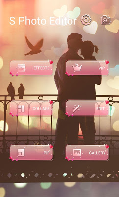 FREE-LOVEBIRD THEME - screenshot