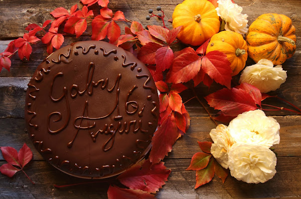 Sacher in autumn di letiziacaprettiphotography