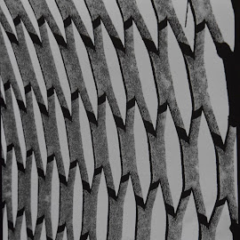 by Vicki Switala Riley - Abstract Patterns ( blackandwhite, oval, patterns, metal, pattern, black and white, abstract, film,  )