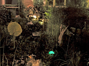 Photo: This is our garden. Lighting makes the house look more welcoming.