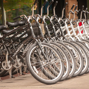 Hot Wheels by Kevin Beasley - Transportation Bicycles ( wheels, bicycle, bikes, city, group, transportation )