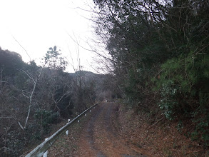 林道を奥へ
