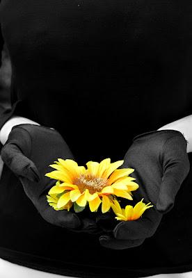 Un fiore in dono di PhotoBySaraPesucci