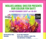 Colour Fun and Night Under The Stars : Wollies Animal Project